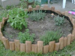 The benefits of planting your own herb garden