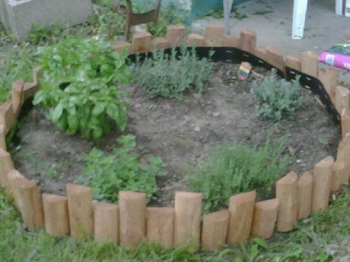 My herb garden planted in mid April 2010