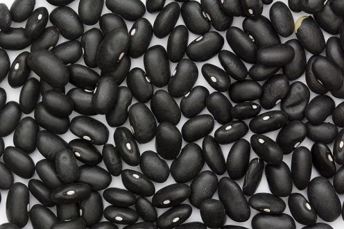Black beans, also known as turtle beans, have a long history has a dietary staple.