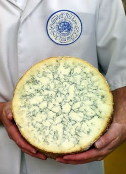 A gorgeous specimen of blue-veined cheese