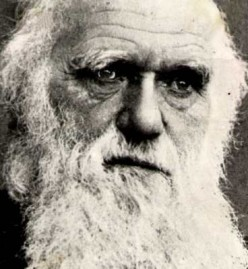 Human Origins - Charles Darwin and the Theory of Evolution