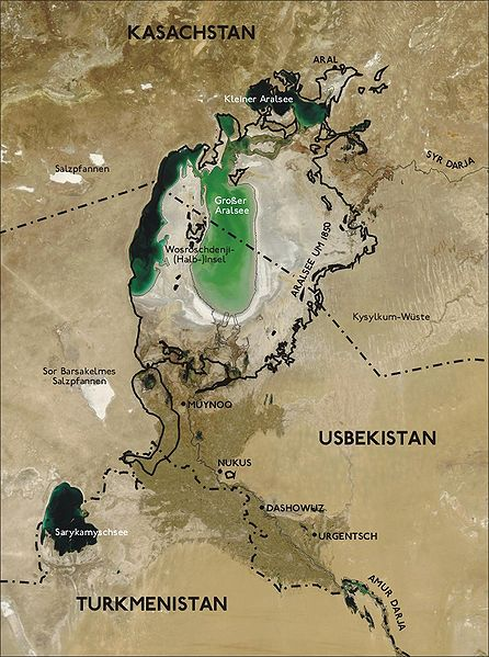 Aral Sea from Space, 2004 Image courtesy Wikimedia Commons