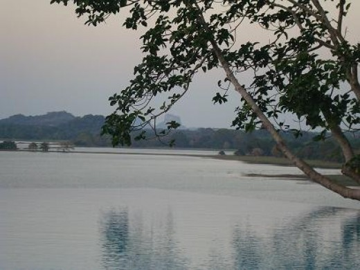 Nearby Kandalama lake with Sigiriya rock in distance