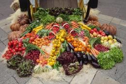 Metabolism Foods