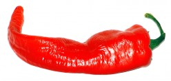 Spice up Your Life With Red Chili Pepper :: All About Red Chili Pepper