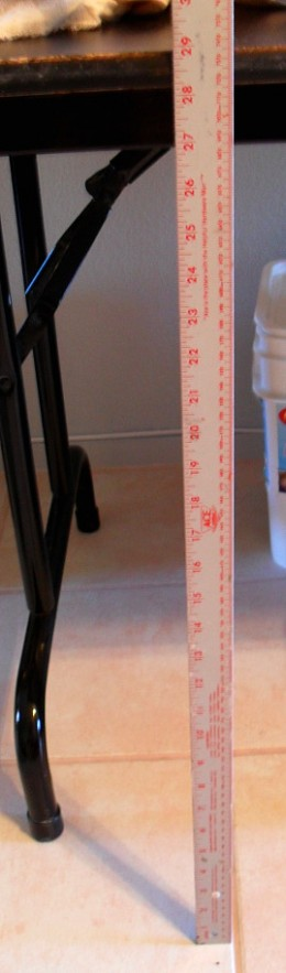 Measure the distance from the floor to the under side of the table top. This will be the length of the table skirt.