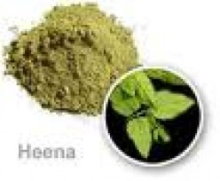 The Art of Herbs - Henna