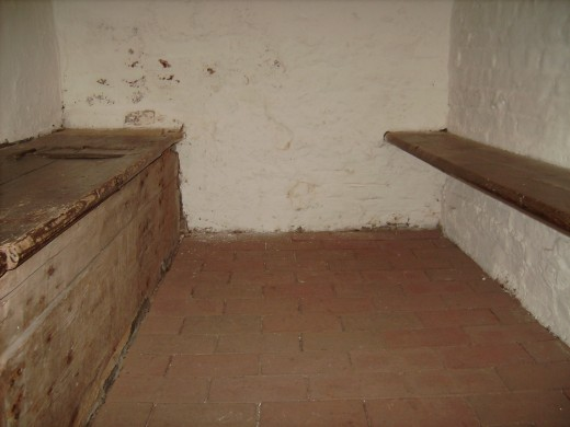 Inside one of the cells