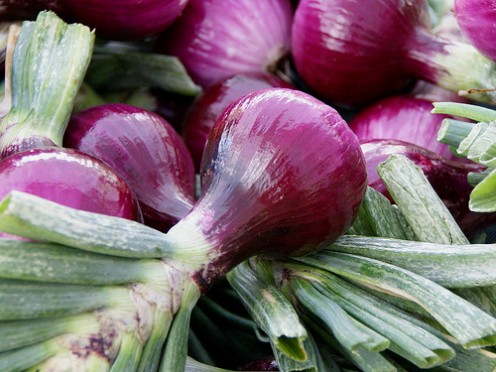Green Market Sweet Onions  by Atelier Teee via Flickr