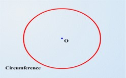 The measurements of a circle(Circumferance, Area of a circle and a sector, Perimeter of a sector