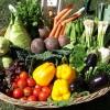 Eat Vegetables that Increase Longevity