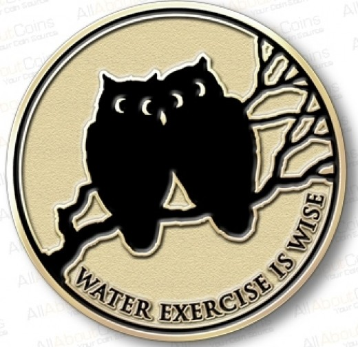 "swim fitness pin saying ""water exercise is wise"""
