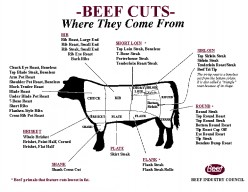 Distinguishing Beef Cuts