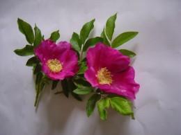 Rose petals work well.