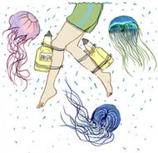 Using vinegar to heal jellyfish stings