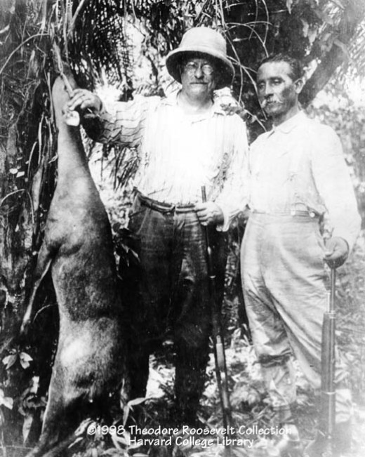 Roosevelt with the great Brazilian explorer Rondon