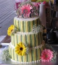 Source:  http://twilightguide.com/tg/2009/10/29/bella-inspired-twilight-birthday-cake/