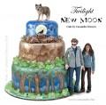 Source:  http://www.twifans.com/forum/topics/twilight-new-moon-cake-made