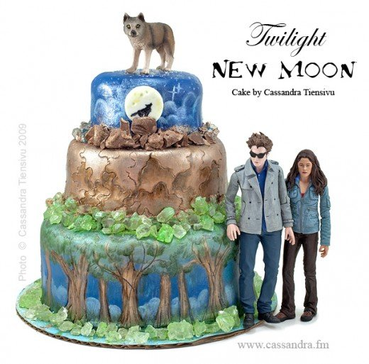 Source:  http://www.twifans.com/forum/topics/twilight-new-moon-cake-made