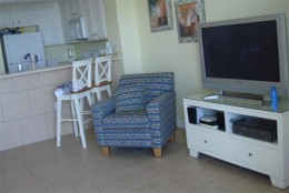 Chair, TV, and bar.