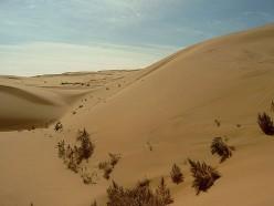 Asian Deserts