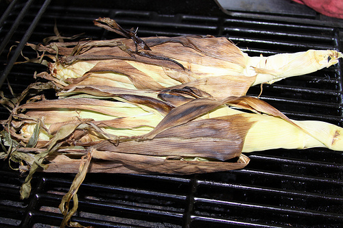 Grilling corn on the cob in their husks (image from El Biffster on Flickr)