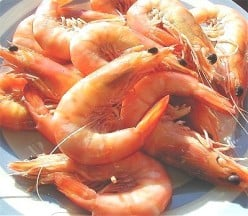 How To Make Prawn and Fish Stock