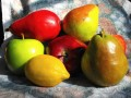 Easy, Healthy Recipes For Fruit Salsa!