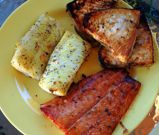 different species of grilled fishes
