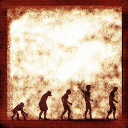 When it comes to evolutionary progress, this is the kind of picture that comes to mind; but is it always true?