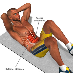 exercise diagram showing the muscles engaged during a sit-up