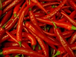 Effects of Chilli In Reducing Cholesterol