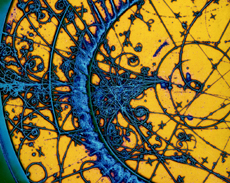 In a bubble chamber or a cloud chamber, we can actually see how subatomic particles interact with the cosmos.