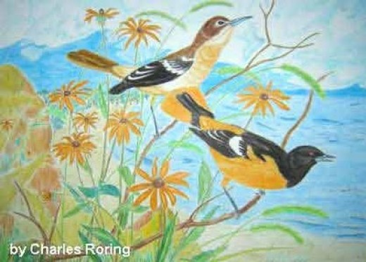 Two birds by the lake by watercolorist Charles Roring