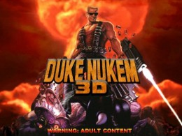 I thought the flat haircut and glasses looked strikingly similar to duke nukem! :)