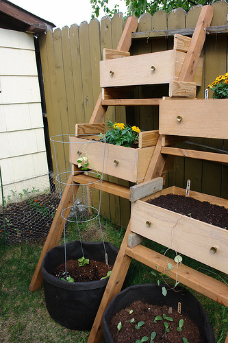 A great use of vertical space and container gardening.  Thanks Flickr!