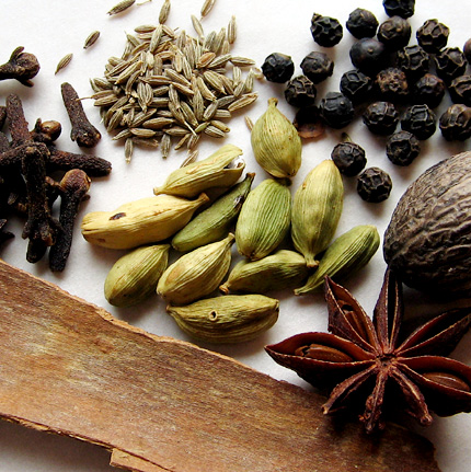 whole spices for the hot spice extract (native name:garam masala)