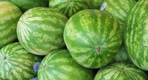 Whole watermelons / Photo by E. A. Wright