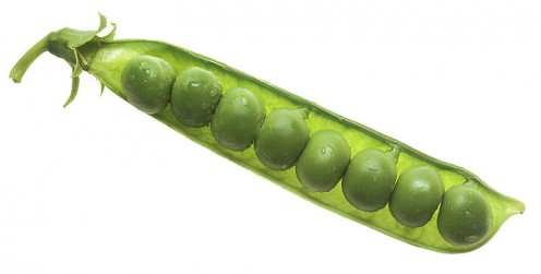 Image of peas from the public domain.  Peas are great in this recipe, especially fresh ones!