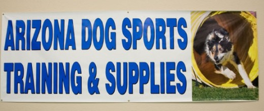 sport dog training