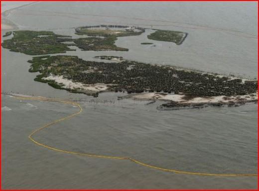 Breton Island, Louisiana -- a bird sanctuary. Did the booms save them?