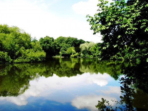 The tranquil waters of the lake. Photograph by D.A.L.