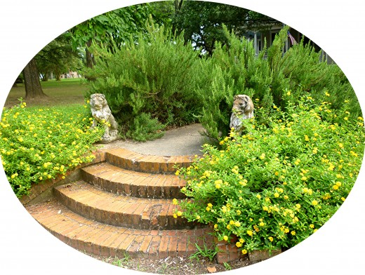 Steps leading up to the Pin Oak B & B in Calvert, Texas