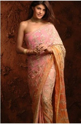 Bollywood Actress in a Saree 2