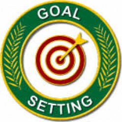 setting goals for yourself is important