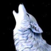BlackSun profile image