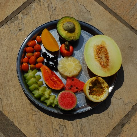 Brazilian Fruit Plate; avocado, honeydew melon, passion fruit, watermelon, guava, starfruit, papaya, kumquat, acai, pineapple, mango, cashew apple