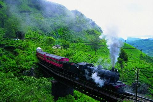 Sri Lanka Tea Estate Train