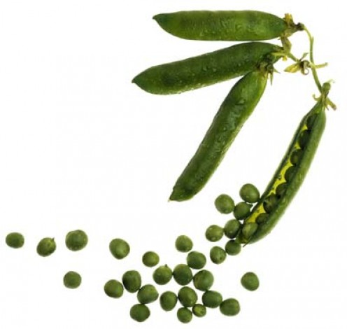 Delicious green peas