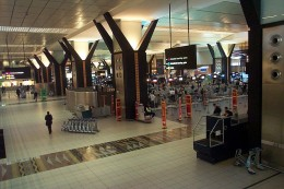 Tambo International Airport